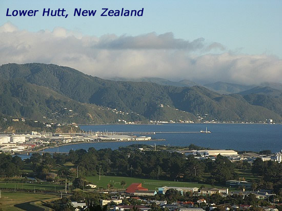 lower hutt men My experience includes general and prison counselling, as well as family court and men's living without violence group and one-to-one counselling.
